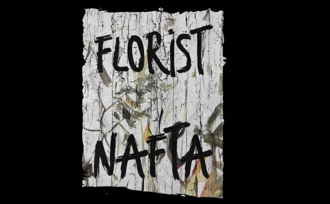 Nafta 自由手绘简洁而现代的画笔标记免费商用字体