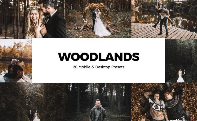 20款户外树林高级黑金色调LR调色预设文件 20-woodlands-lightroom-presets-luts
