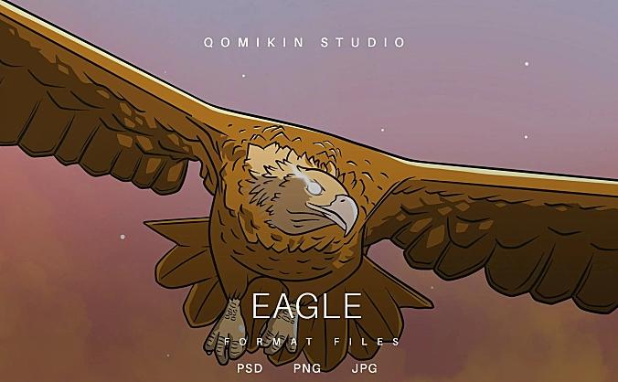 老鹰动物插画&封面背景素材 Eagle Illustration