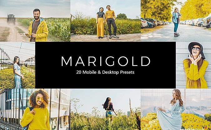 20款富有活力的黄色色调LR软件调色滤镜文件 20-marigold-lightroom-presets-luts