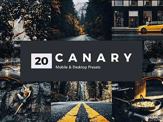 20款活力黄Lightroom软件滤镜预设 20-canary-yellow-lightroom-presets-and-luts