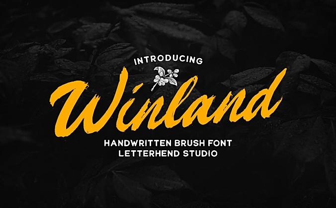 自然毛笔手写效果英文字体 winland-brush-font